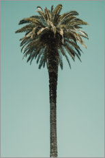Premium poster Palm Tree in blue sky
