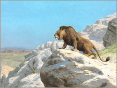 Wall sticker  Lurking lion - Jean Leon Gerome