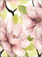 Canvas print  Blushing Magnolia I - Grace Popp