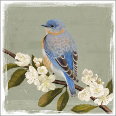 Canvas print  Bird on a branch i - Victoria Borges