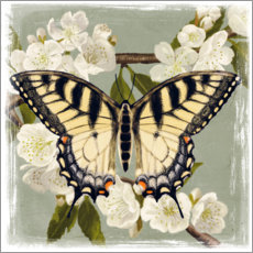 Canvas print  Butterfly on a branch i - Victoria Borges