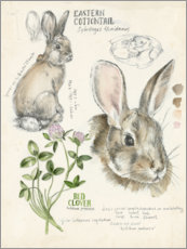 Premium poster Bunny and clover