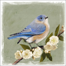 Canvas print  Bird on a branch II - Victoria Borges