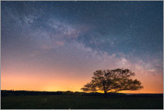 Aluminium print  Starry sky and Milky Way in the Harz - Oliver Henze