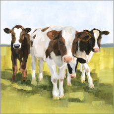 Acrylic print  Cows in the pasture II - Victoria Borges