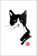 Premium poster Cat black and white