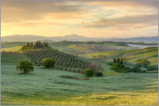 Canvas print  Tuscany in the early morning light - Michael Valjak
