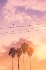 Premium poster Birds on a wire