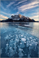 Canvas print  Ice bubbles in the lake at sunset - Jaynes Gallery