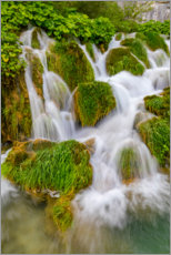 Premium poster  Waterfalls in the Plitvice National Park - Jaynes Gallery