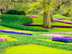 Canvas print  Garden in Lisse - Terry Eggers