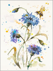 Canvas print  Cornflower & Bumblebee - Sillier Than Sally