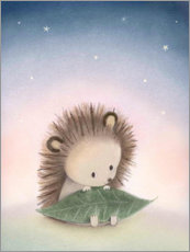 Premium poster  Little hedgehog - Dubravka Kolanovic