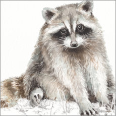 Premium poster  Forest Friends - Raccoon - Lisa Audit