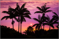 Premium poster  Sunset on the Kona Coast - Russ Bishop