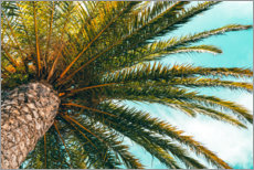 Premium poster  Green palm leaves in front of a blue sky - Radu Bercan