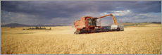 Premium poster  Combine harvester on a field at Palouse