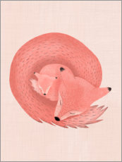 Wall sticker  Sleeping foxes - Mel Armstrong