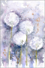 Acrylic print  Dandelions in the wind - Rachel McNaughton