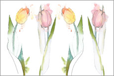 Canvas print  Colorful tulips - Rachel McNaughton