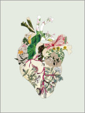 Canvas print  Botanical heart - Bianca Green
