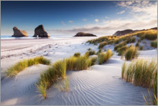 Canvas print  Deserted beach in New Zealand - Sven Müller