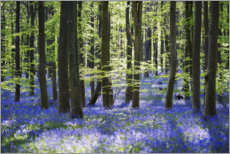 Wall sticker  Blue sea of flowers in the forest - The Wandering Soul