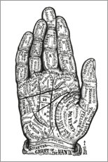 Acrylic print  Hand Chart - Wunderkammer Collection