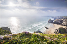 Aluminium print  Spring on the Cornish coast - The Wandering Soul