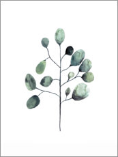 Canvas print  Eucalyptus - Mantika Studio