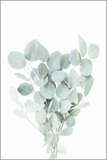 Canvas print  Eucalyptus branches - Sisi And Seb