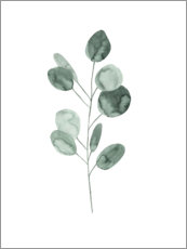 Canvas print  Eucalyptus branch - Mantika Studio