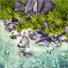 Foam board print  Anse Source d'Argent from above - Jan Christopher Becke