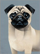 Wall sticker  Pug - Dieter Braun