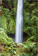 Premium poster Waterfall in the rainforest, Bali