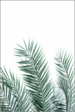 Foam board print  Palm leaves - Sisi And Seb