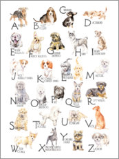 Aluminium print  Dogs from A to Z - Wandering Laur