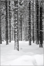 Acrylic print  Deep dark white FOREST - Studio Nahili