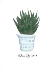 Wall sticker  Aloe vera - Patruschka