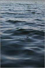 Canvas print  Deep blue water - Studio Nahili