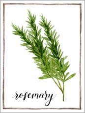 Premium poster  Herbal illustration rosemary - Grace Popp