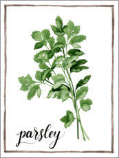 Acrylic print  Herbal illustration of parsley - Grace Popp