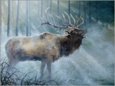 Canvas print  Elk Journey III - B. Lynnsy