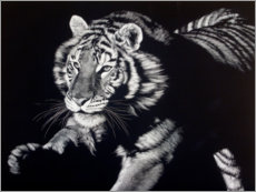 Premium poster Portrait of a tiger