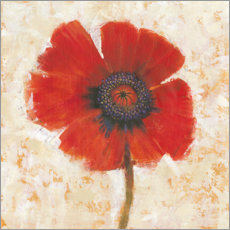 Aluminium print  Red poppy flower - Tim O'Toole