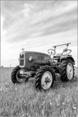 Premium poster  Tractor MAN type 4K1 on the field - Bernd Wittelsbach