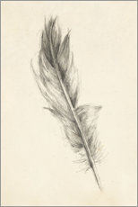 Premium poster Feather Sketch I
