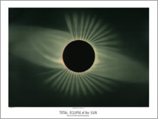 Acrylic print  The eclipse, vintage - Wunderkammer Collection