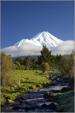Wall sticker  Nature at Mount Taranaki - David Wall