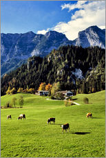 Wall sticker  Alpine views with forest and pasture - Ric Ergenbright